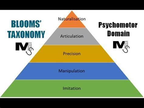 Case Studies - Taxonomy Strategies